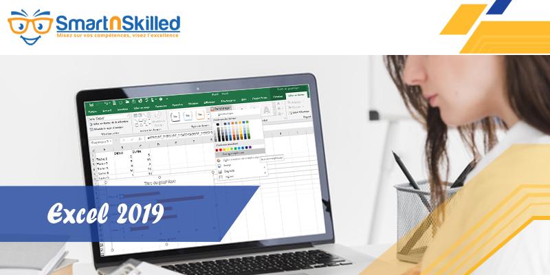 Excel 2019 / 365 pour les experts